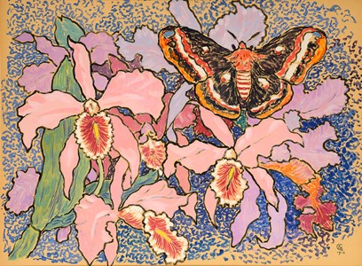 Orchids and an Emperor Moth