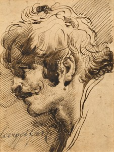 The Head of a Man in Profile to the Left