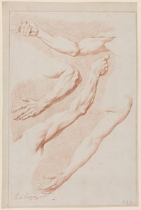 A Sheet of Studies of Four Arms