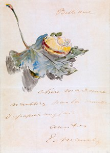 An Illustrated Letter, with a Snail on a Leaf