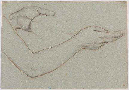 Study of an Arm and Hands Holding a Dish
