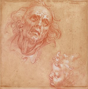 Studies of the Heads of an Old Man and a Young Boy [recto]; Study of Drapery [verso]