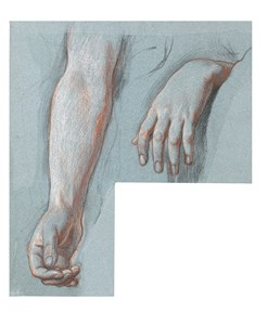 a. Studies of a Right Arm and Left Hand; b. Study of a Left Hand