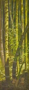 A Bamboo Grove