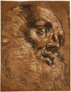 The Head of a Bearded Man