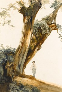 Study of a Tree, with a Young Boy