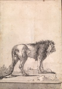 A Standing Lion