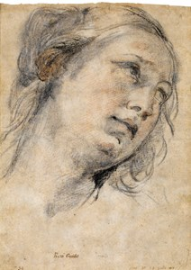 The Head of a Young Woman Looking Upwards