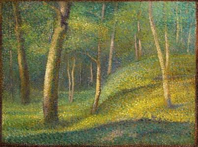 A Woodland Glade (Sous-bois)