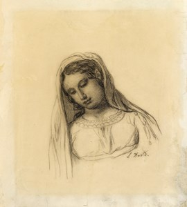 A Young Woman with a Veil