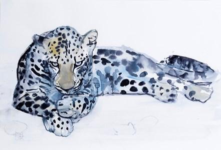 An Arabian Leopard