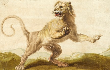 A Lion, after Rubens