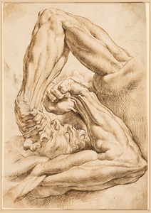 A Sheet of Anatomical Studies: A Left Forearm in Two Related Positions with Parts of the Torsi and a Head [recto]; Fragment of a Drawing of the Hair and Shoulder of a Man [verso]