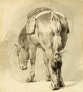 A Saddled Horse, Seen from Behind