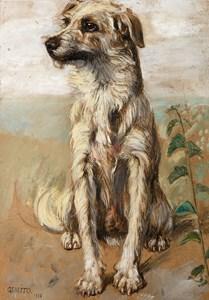 A Seated Dog