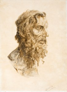 Head of a Bearded Old Man (The Philosopher)